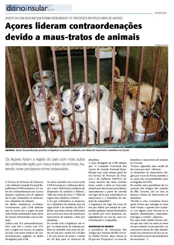 MAUS-TRATOS ANIMAIS.jpg