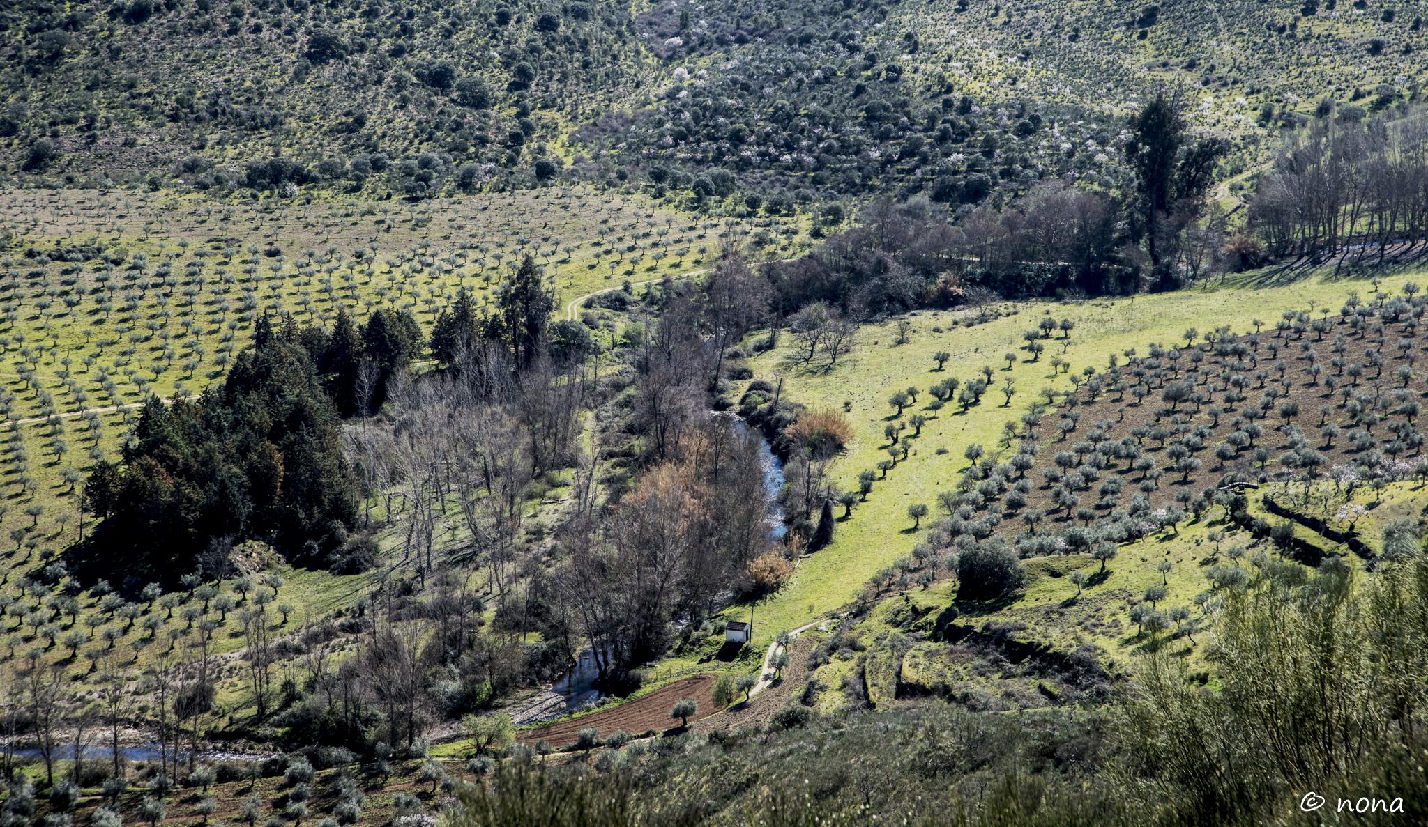 2015 - Rota das Amendoeiras (168).jpg