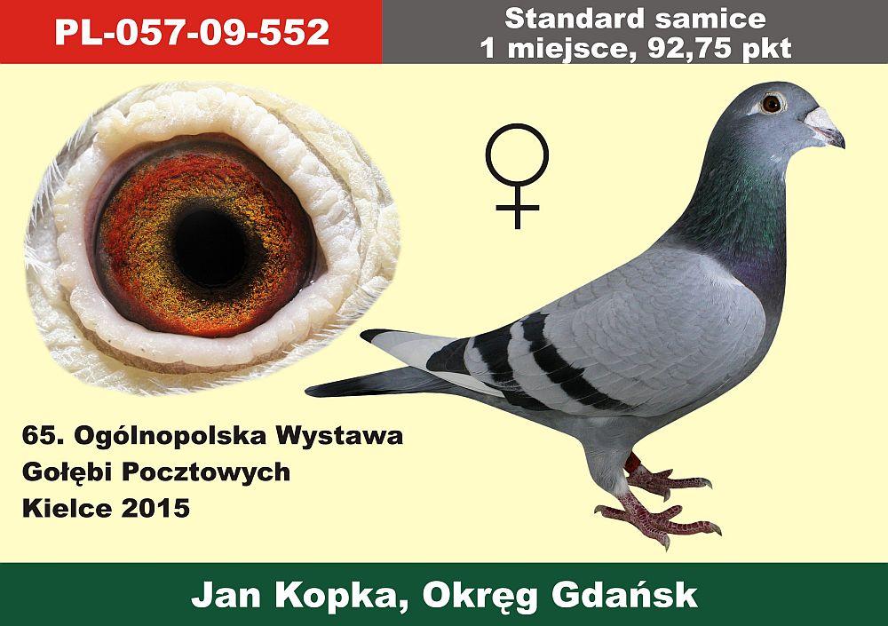 standard_samice_01.jpg