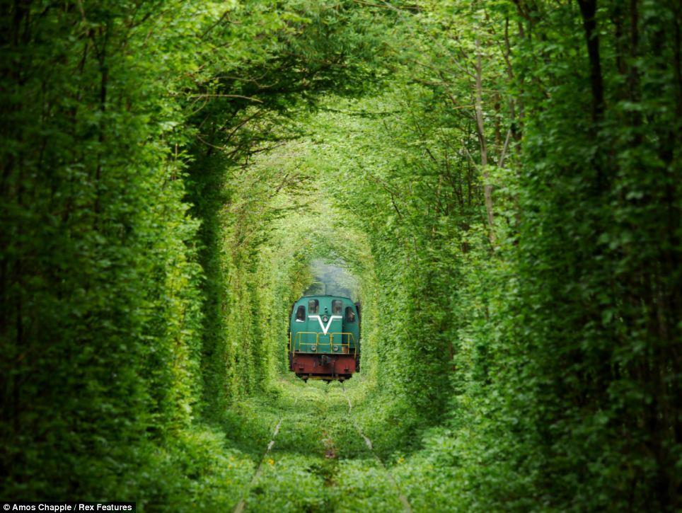 tunnel-of-love_3.jpg